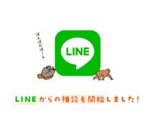 LINEでの相談が可能になりました!